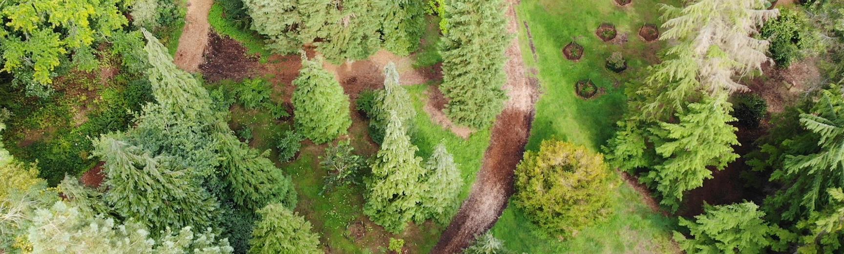 drone harcourt arboretum