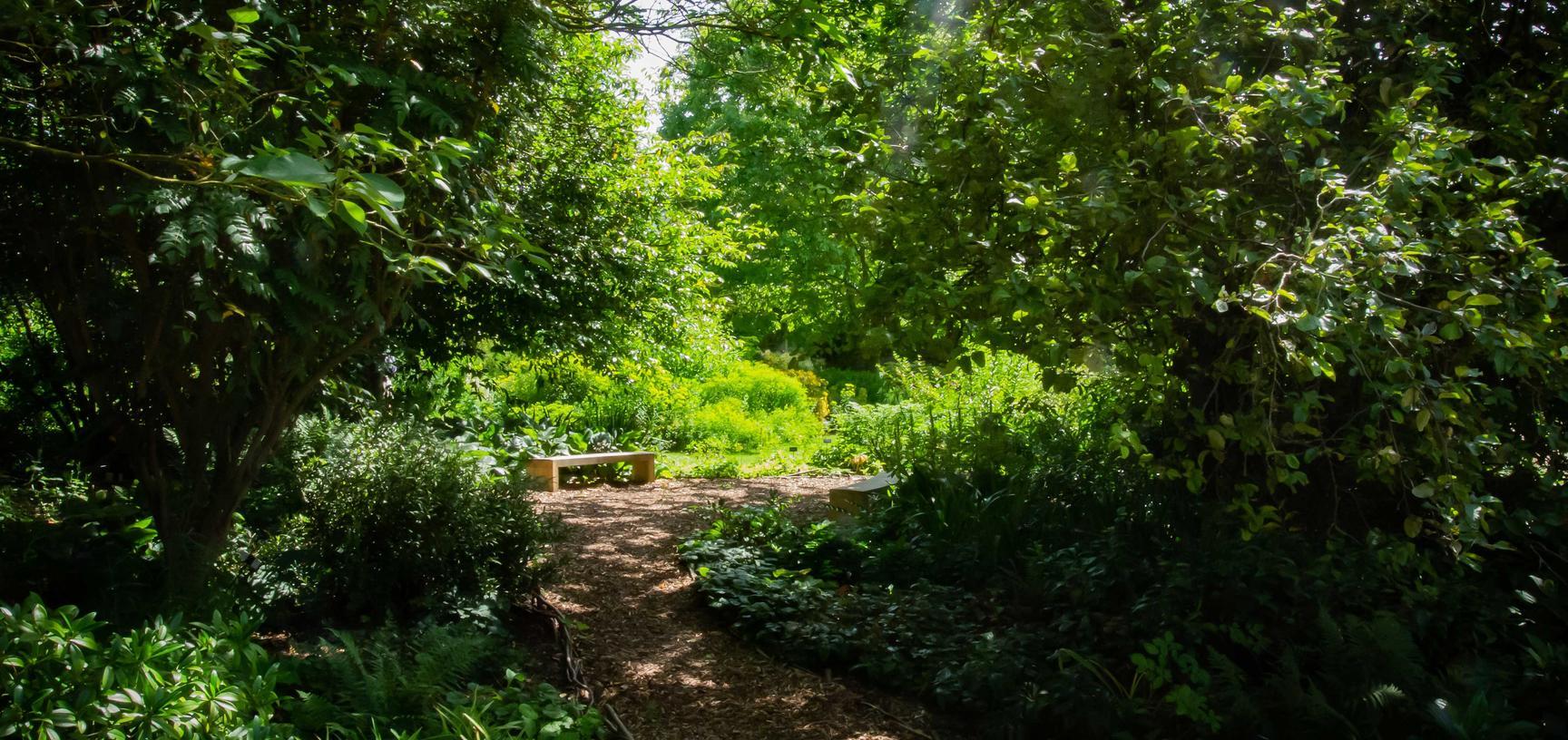 botanic garden  literary woodland  walled garden