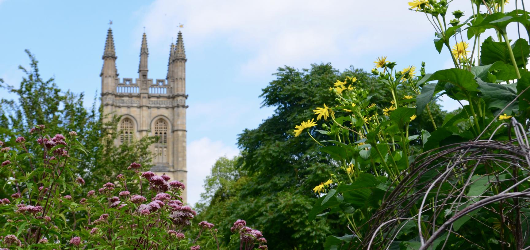 Magdalen Tower and Walled Garden