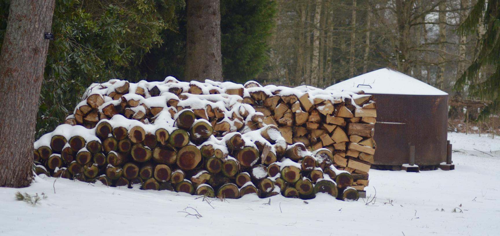 Winter Snow Charcoal Burner Arboretum
