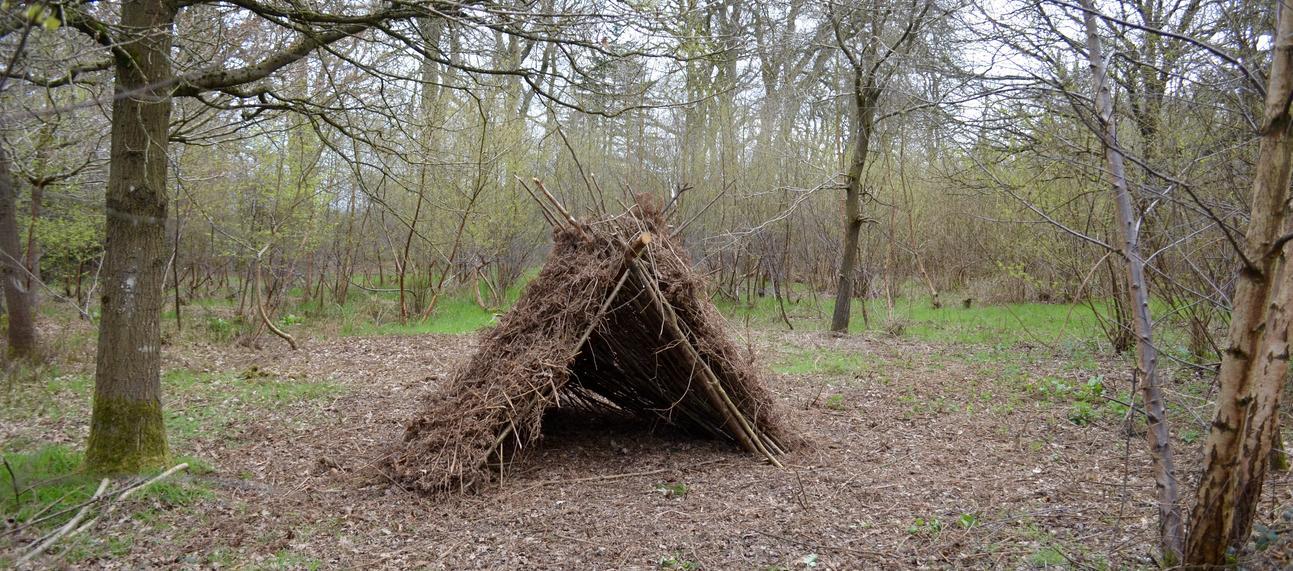Woodland Bushcraft Shelter Structure
