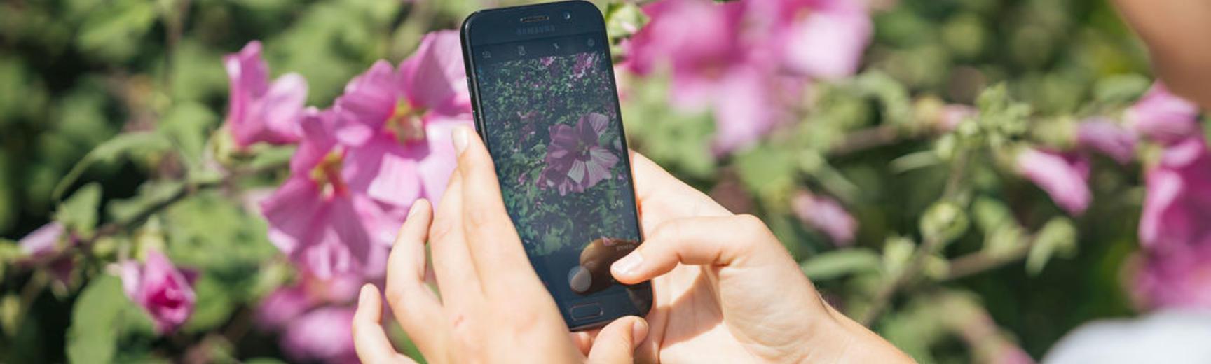 botanicgardensopeningbyianwallman 5751