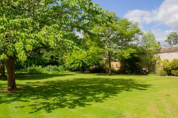 evetns lawn oxford botanic garden