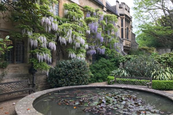 gooseberry garden st johns college