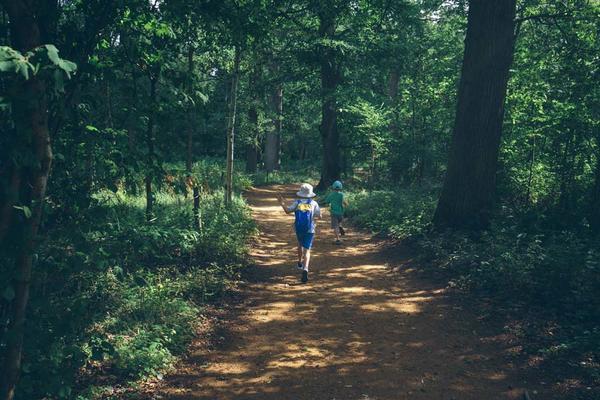 Family Walking Arboretum Woodland (Wallman Lo Res)