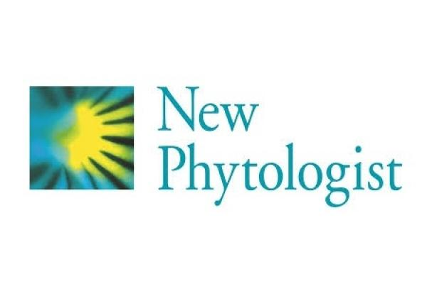 new phytologist inra image