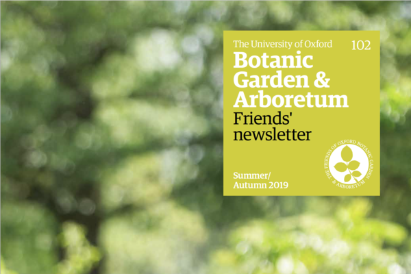 obga newsletter 102 summerautumn