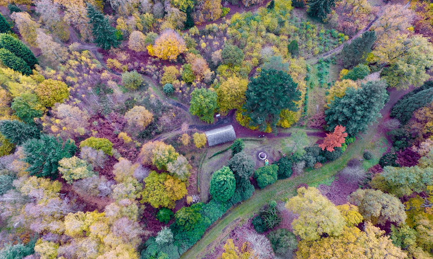 harcourt arboretum  autumn  barn  drone