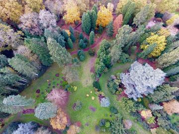 Drone Footage Arboretum