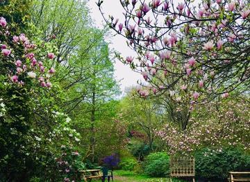 Evenley Wood Garden