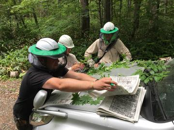 Rapid Botanic Survey work in Hokkaido, Japan